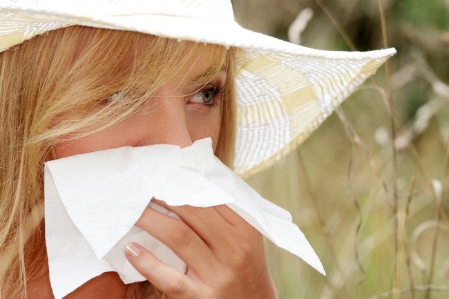 Аллергия на шерсть кошки и шерсть собаки
