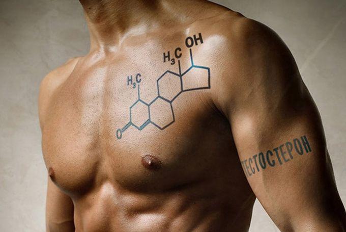 Тестостерон — мужской половой гормон