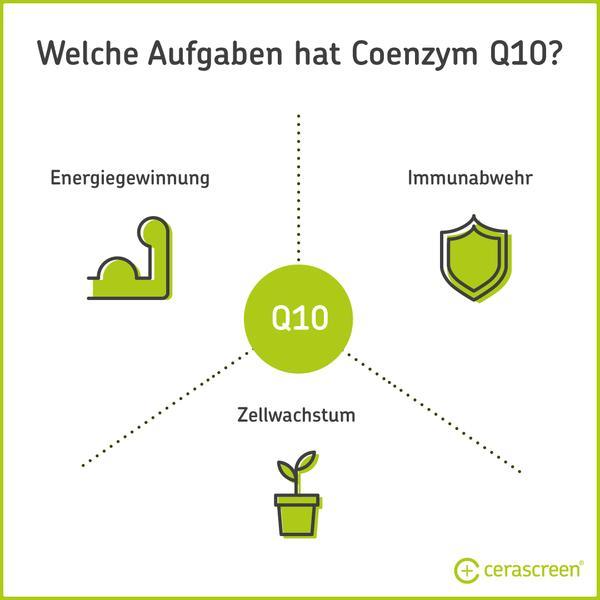 Aufgaben von Coenzym Q10 im Körper
